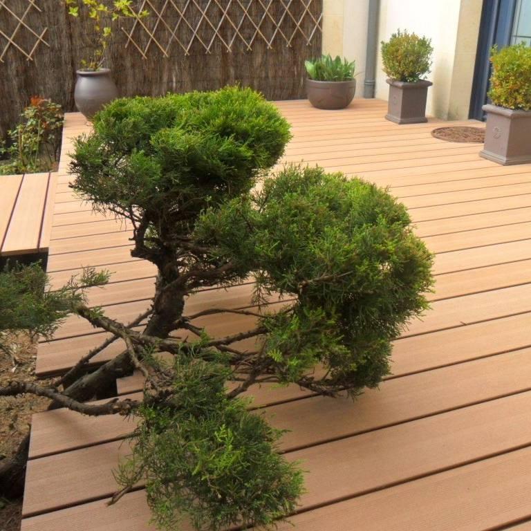 terrasse bois plusieurs niveaux amenager sa terrasse en. Black Bedroom Furniture Sets. Home Design Ideas